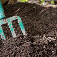 homemade-compost-accelerator